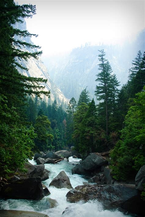 Muir Is the Man: John Muir Quotes and Mountain Musings