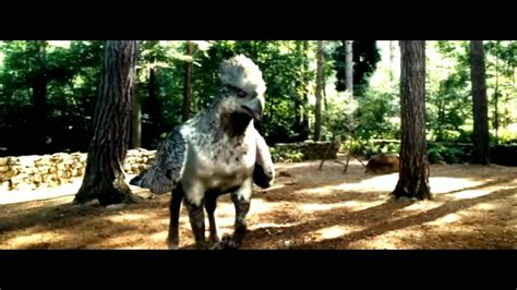 Harry Potter | Dance of the Hippogriff - YouTube