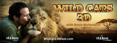 Wild Cats - nWave