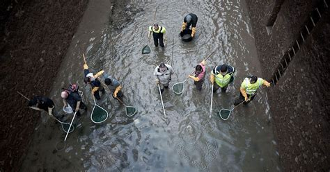 See the remarkable items pulled from a 200-year-old canal