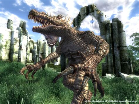 What is the best 'Animal/Pet' Follower?   Skyrim Forums