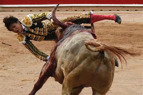 Sickening moment 'world's worst matador' is gored in the