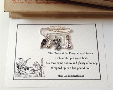 the owl and the pussycat brooch by literary emporium