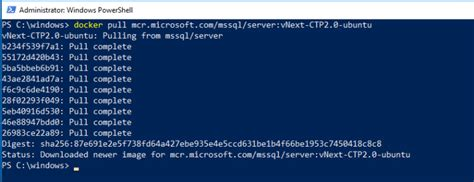 Running SQL Server 2019 CTP in a Docker container