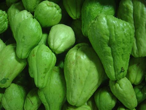 chayote — Wiktionnaire