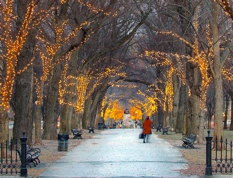Lonely winter walk | On Commonwealth Ave in Boston, as it