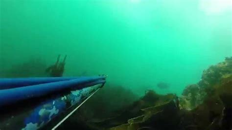 Chasse sous marine au Phare Ouest - YouTube