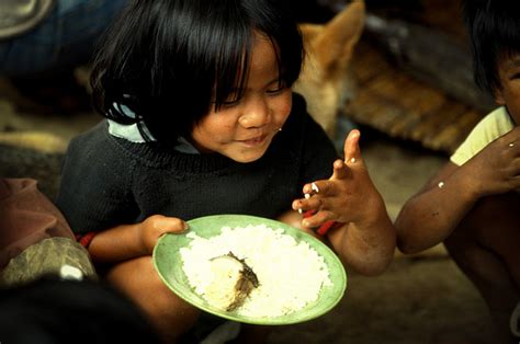 Improving Child Nutrition? The Integrated Child